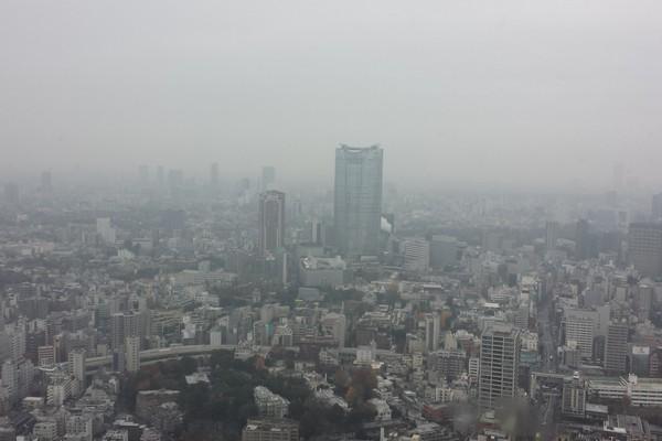 東京タワーで初デート!二人の時間を楽しむおすすめポイント4