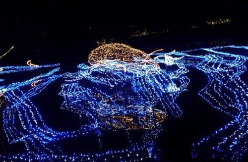 【庄原】備北丘陵公園クリスマスイルミネーション2014